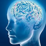The 10 Best Nootropic Supplements to Boost Brain Power